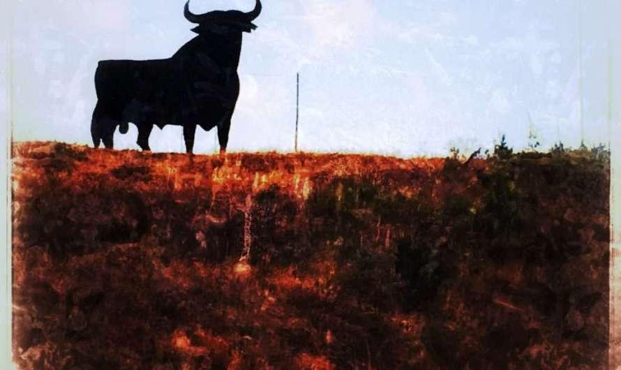 Der spanische Stier
