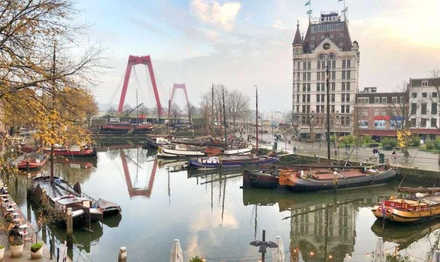 Das Weiße Haus und der alte Hafen in Rotterdam