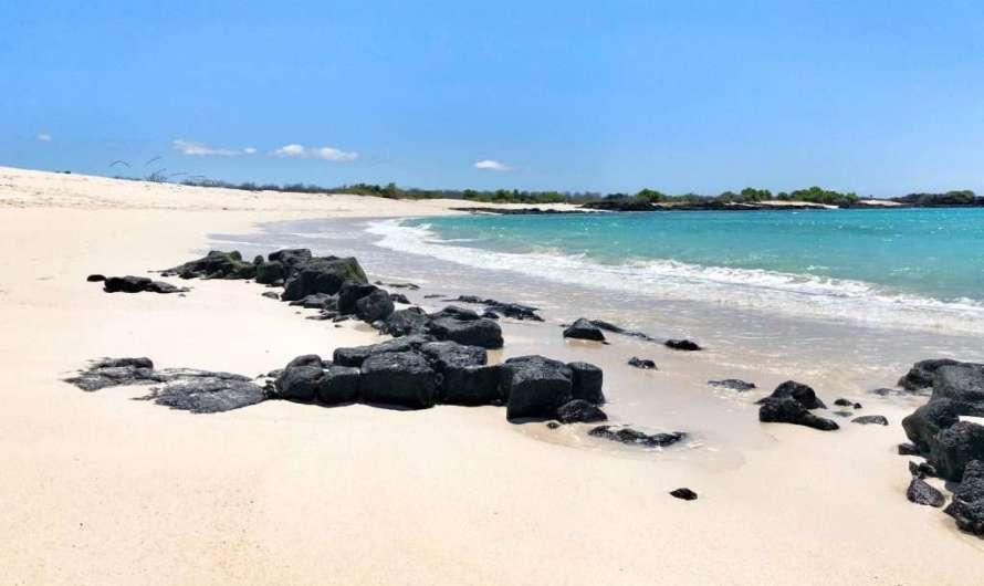 Reise auf die Galapagos-Inseln
