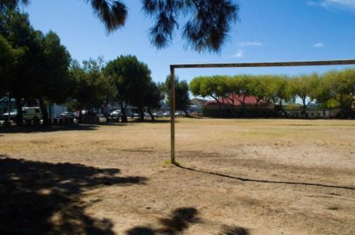 Livingston's Backyard