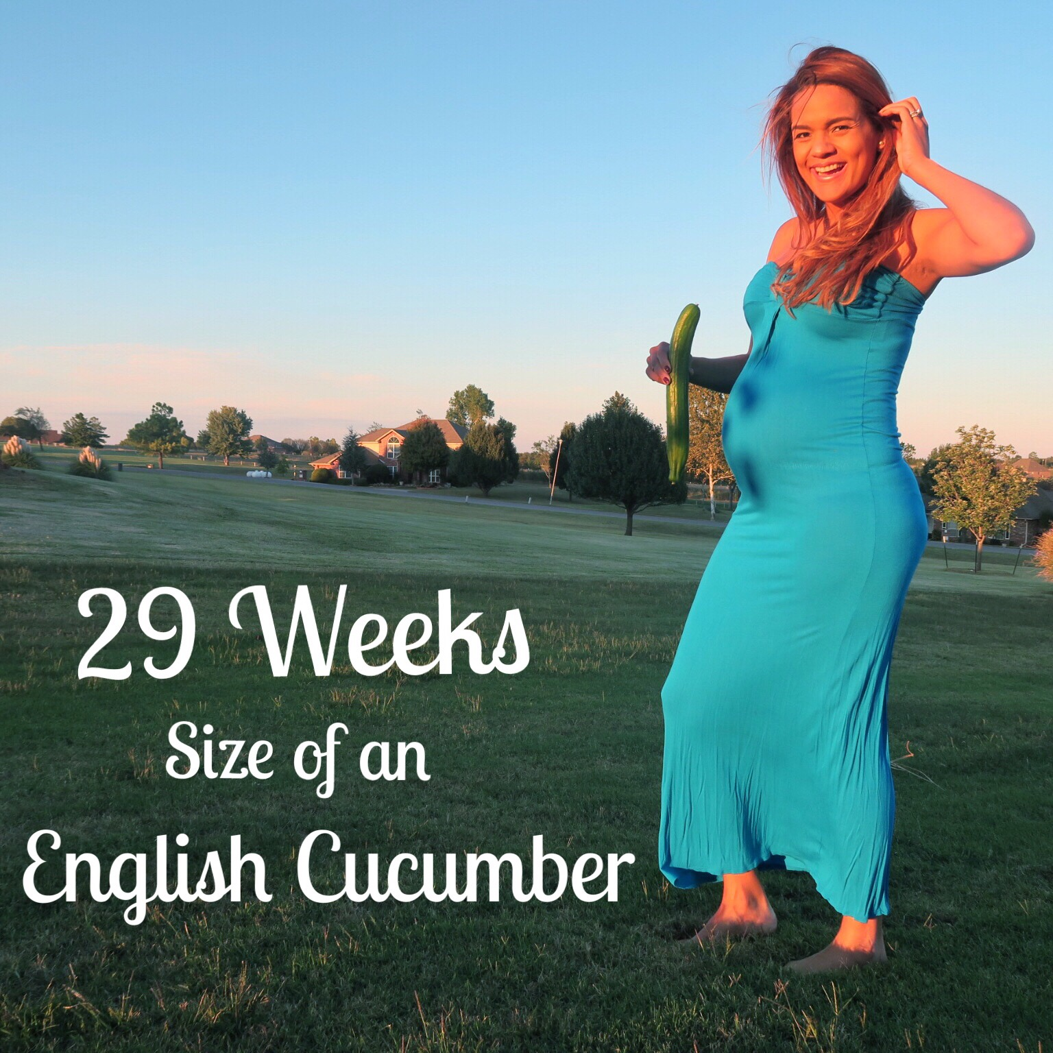 29 weeks pregnant  size of an english cucumber  colorful