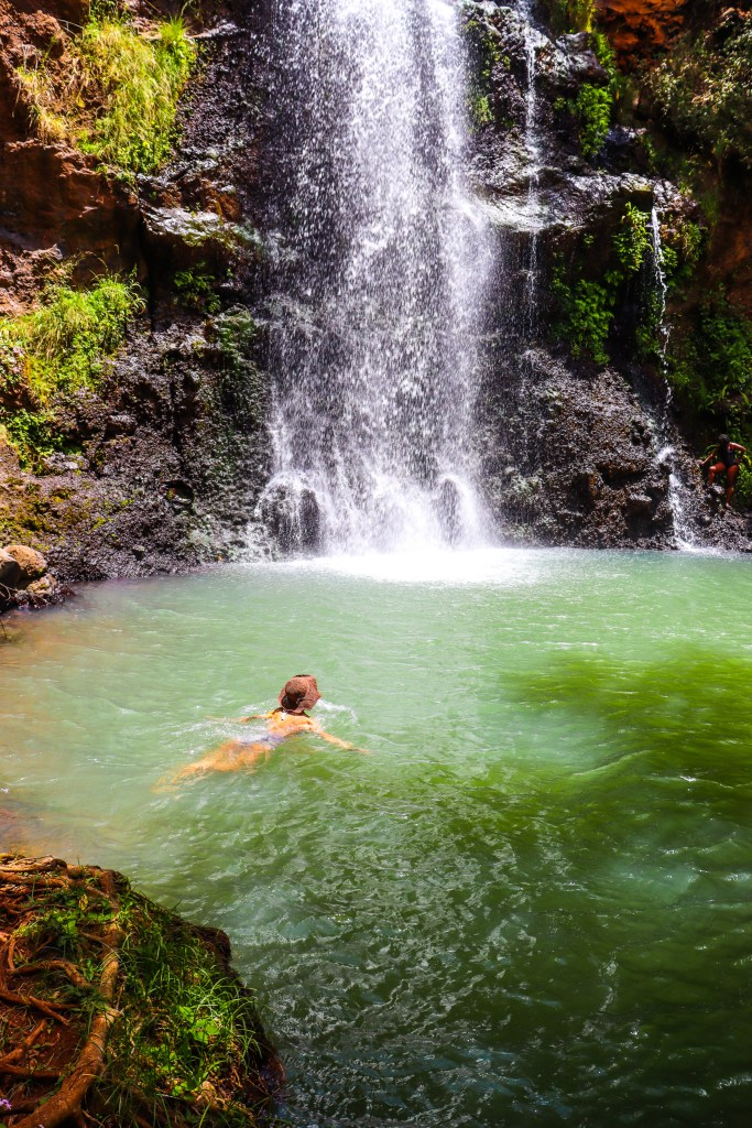 Ngare Ndare Forest Waterfall of the Gods