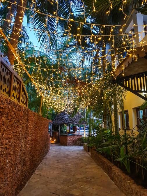 Zanzibar party fairy lights
