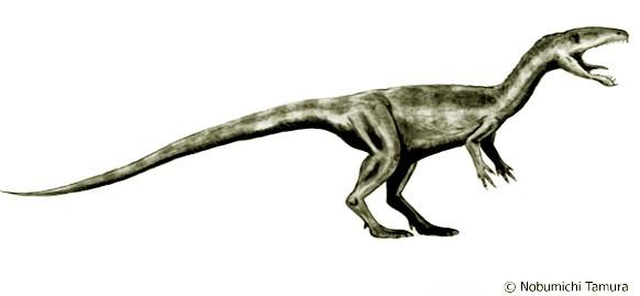 Laevisuchus-Nobu-Tamu-colorgeo
