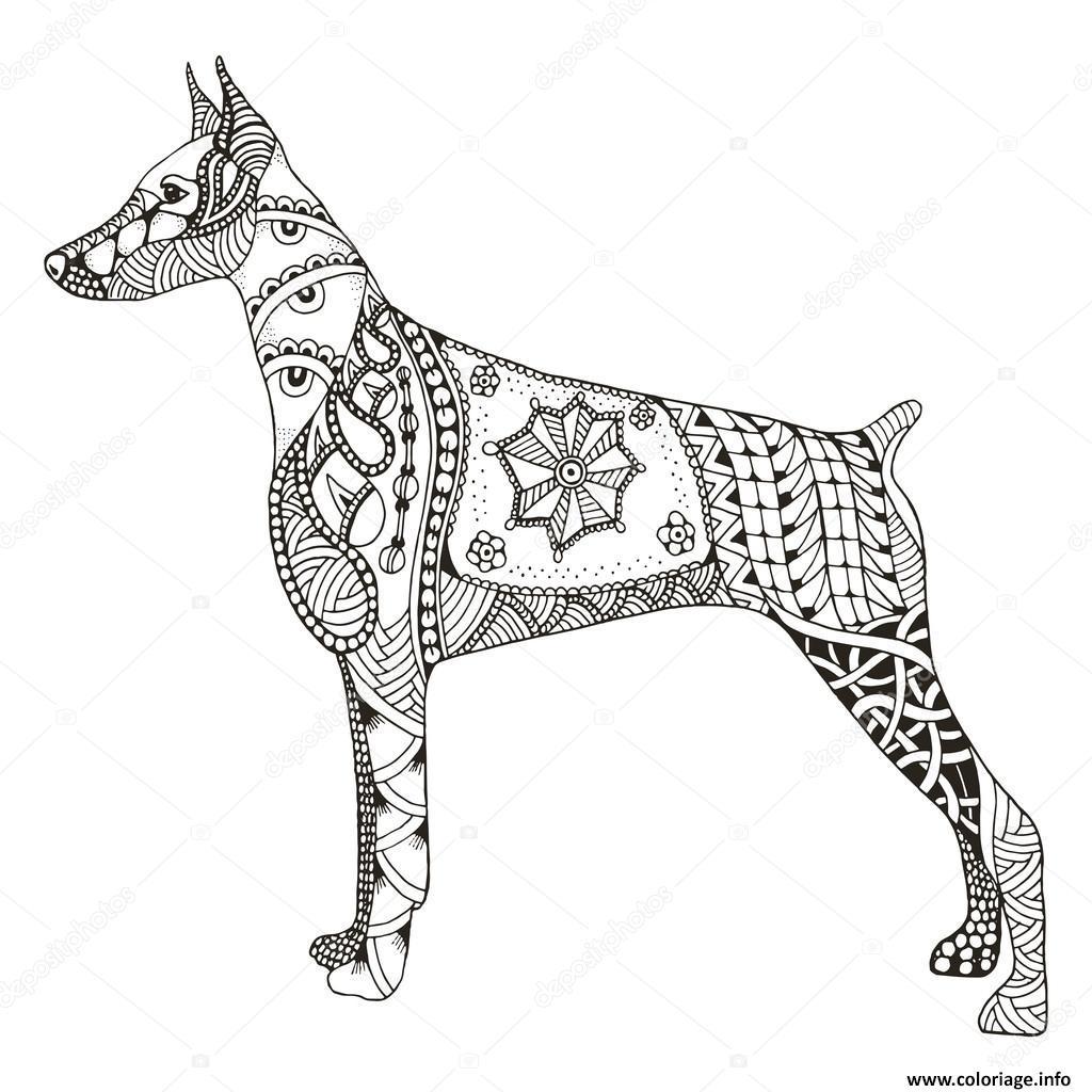 Coloriage Dog Doberman Pinscher Zentangle Adulte Animaux