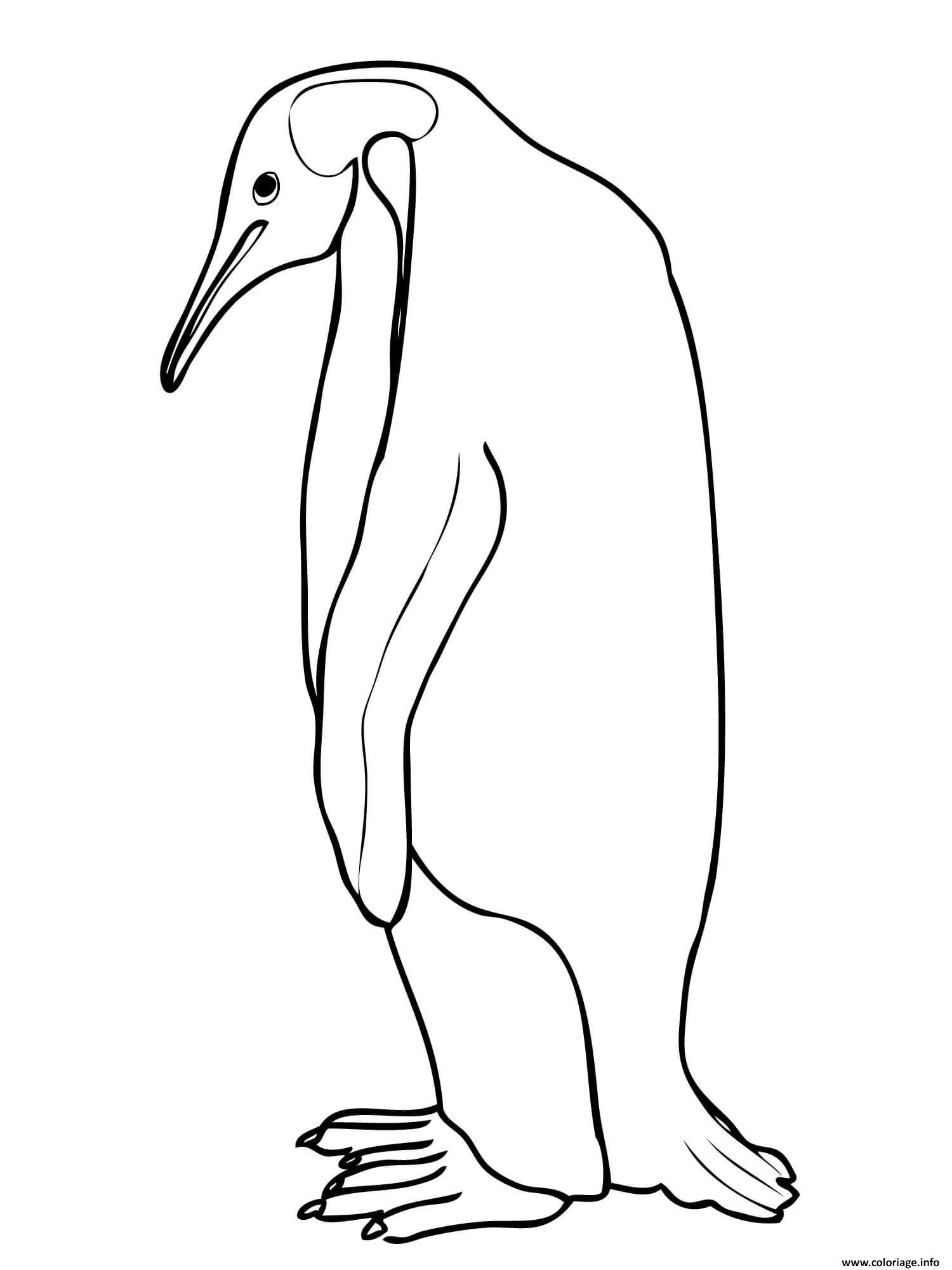 Coloriage Penguin Manchot