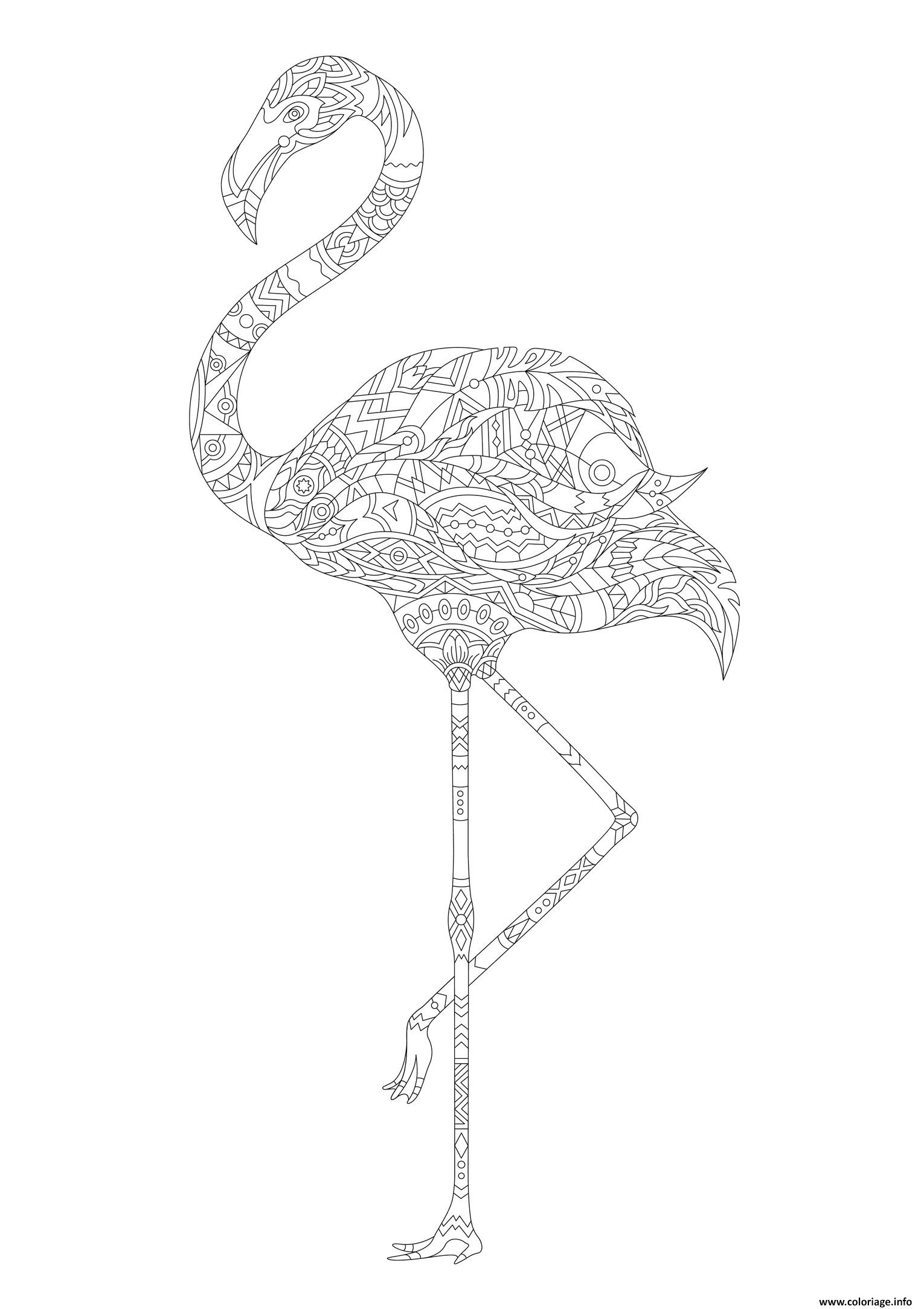 Coloriage Flamant Rose Adulte Animaux Dessin