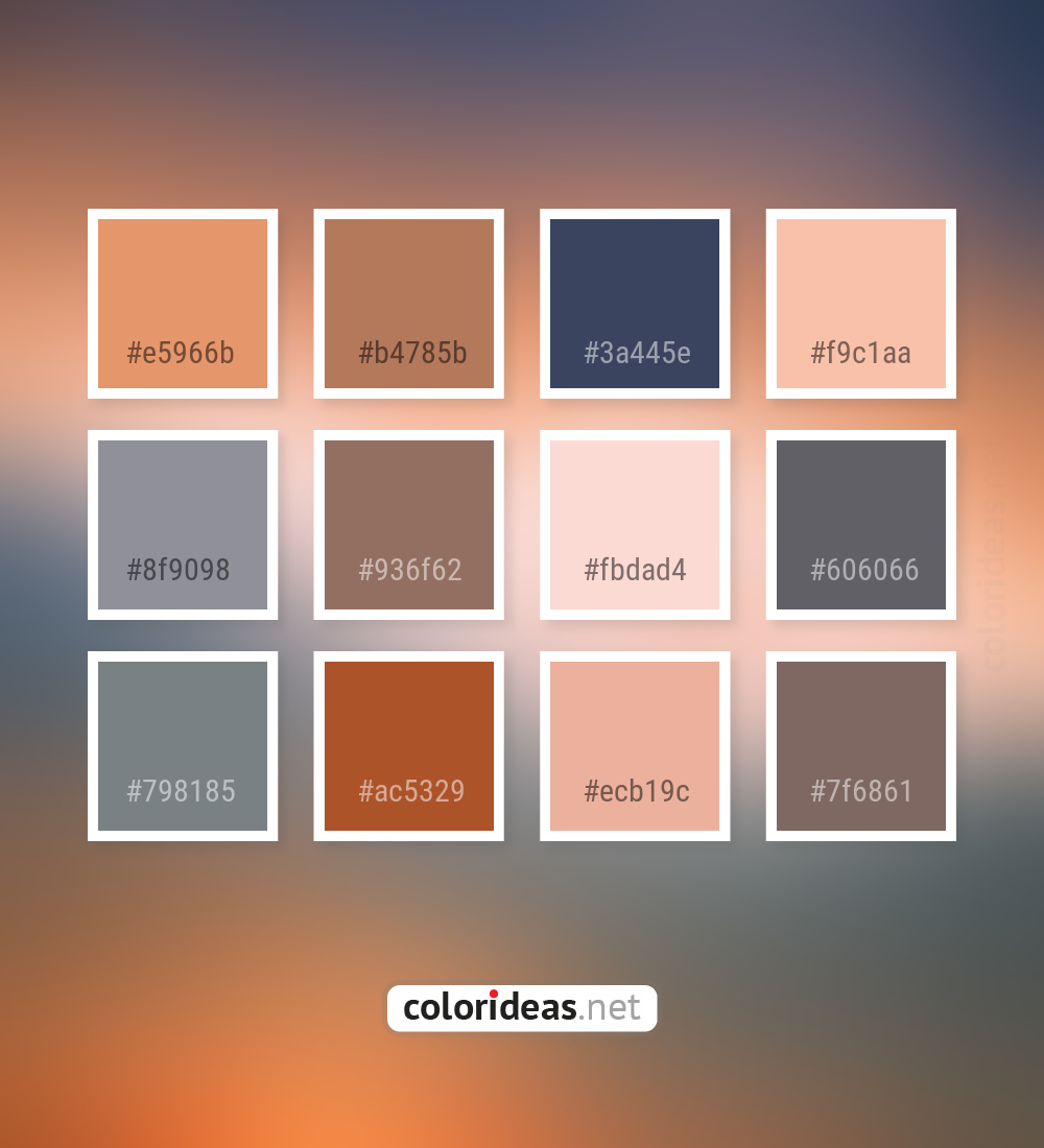 Apricot Gray Manatee Light Slate Gray Color Palette | Color