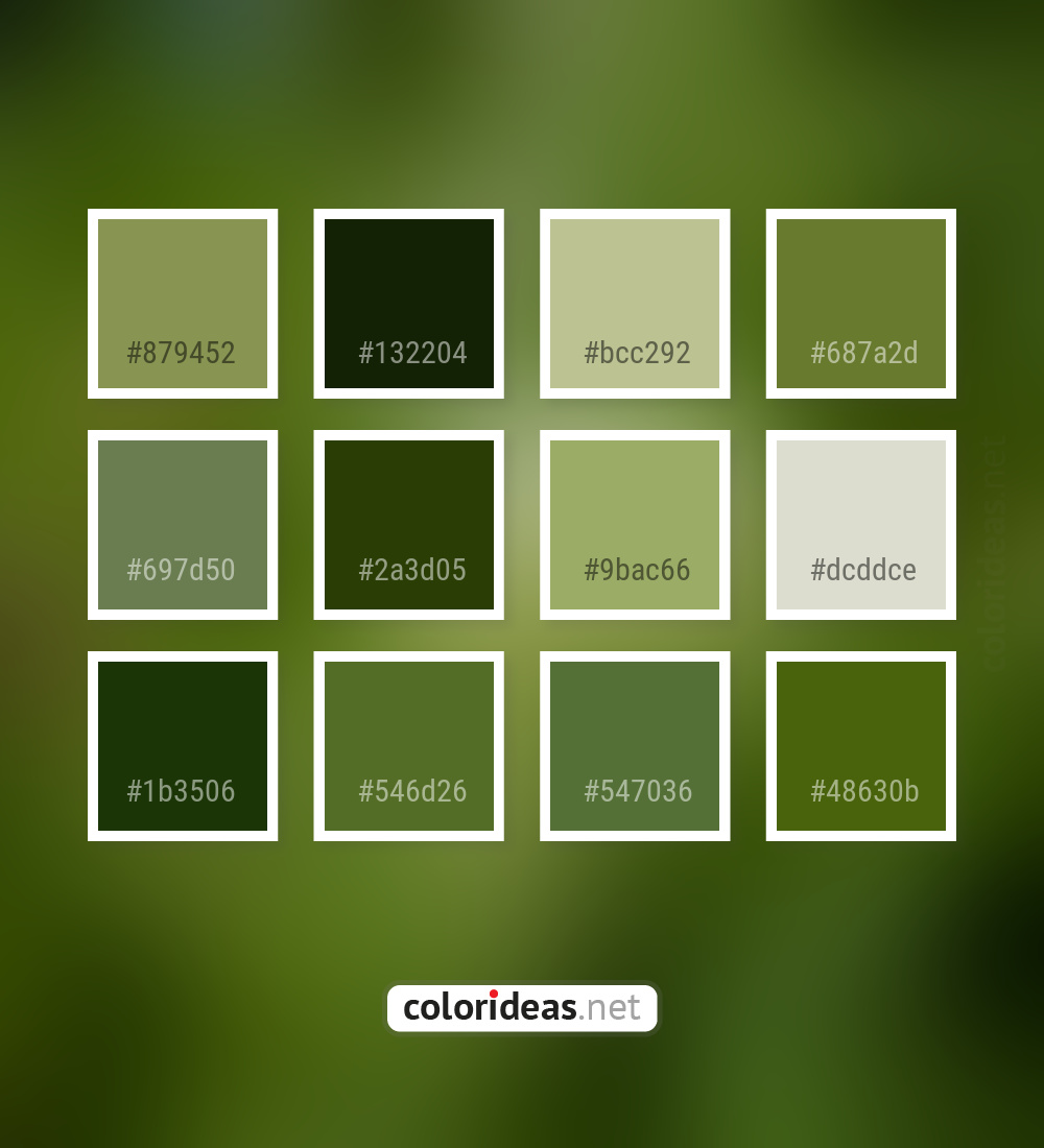 Asparagus Gray 2a3d05 9bac66 Color Palette Color Palette Ideas