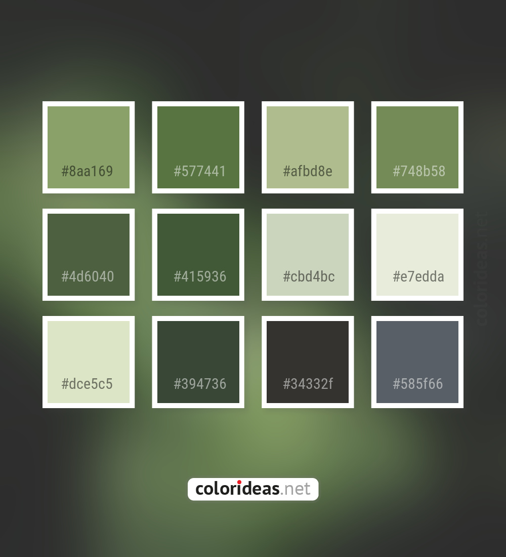 Asparagus Gray Cbd4bc Coriander Color Palette Color Palette Ideas