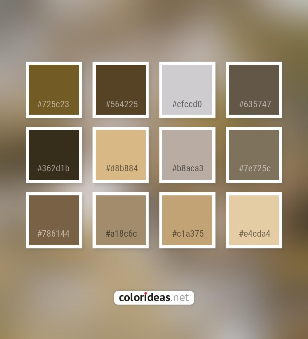 Burly Wood | Color palette ideas