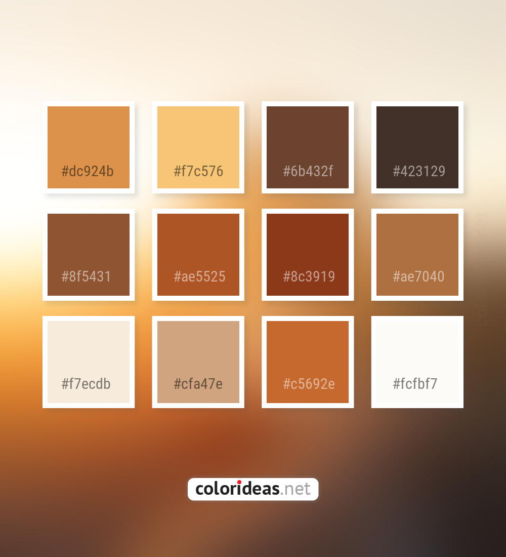 Di Serria Orange Brown Sienna Color Palette Color Palette Ideas Click on the color pickers to see how sienna looks against a secondary color. di serria orange brown sienna color