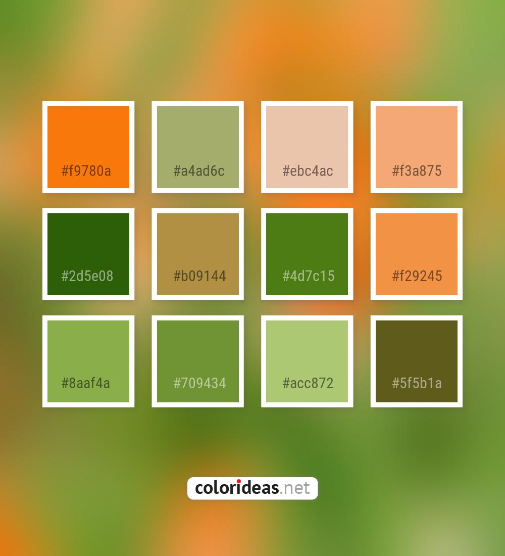 Ecstasy Orange Green Leaf Dark Gray Smoked Color Palette Color