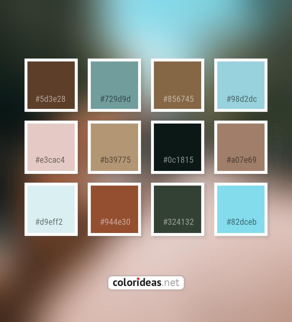 Irish coffee dark gray smoked pink thistle color palette