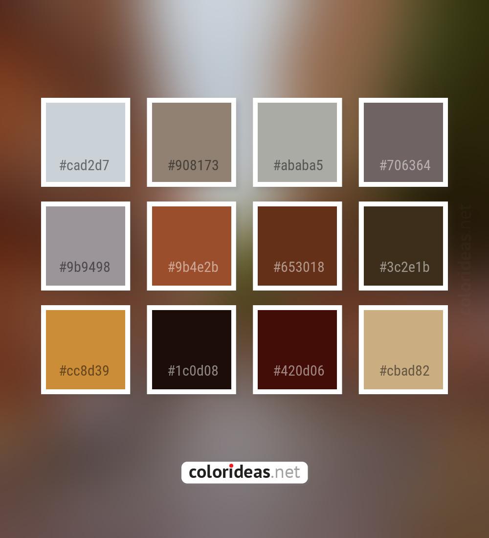 Loblolly Pink Paarl Brown Color Palette Color Palette Ideas
