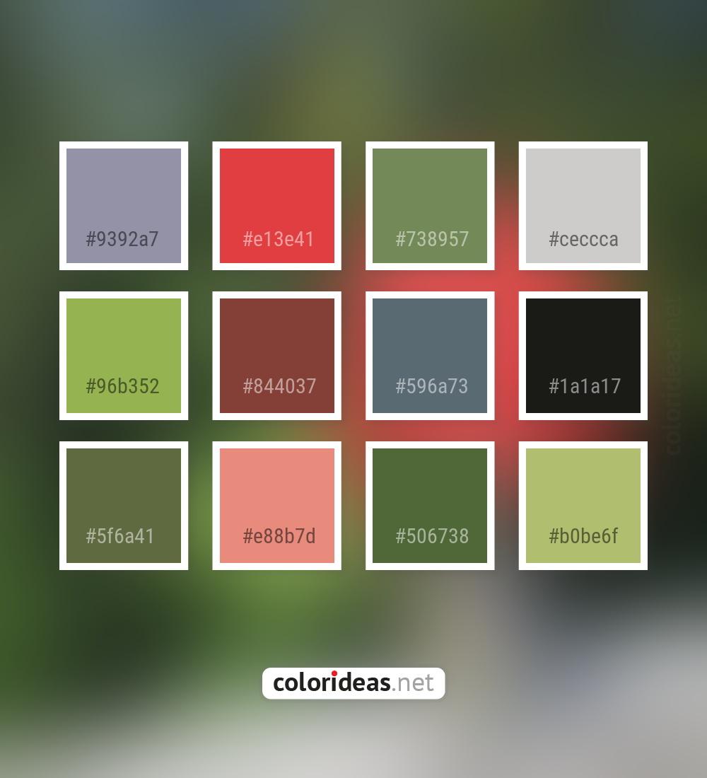 Apricot | Color palette ideas - Part 2