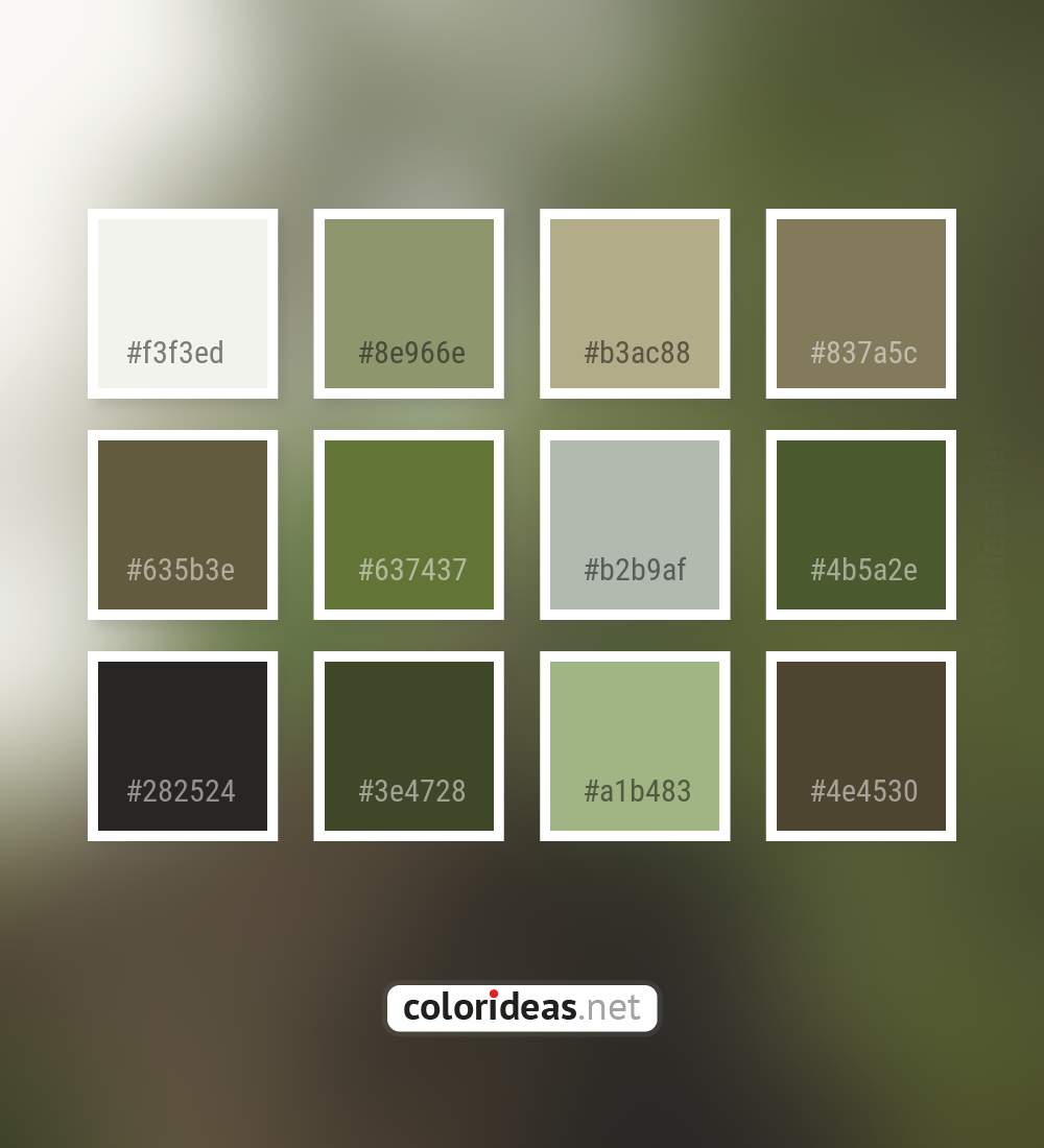 Pampas Beige Dark Gray Smoked Dark Olive Green Color Palette Color Palette Ideas
