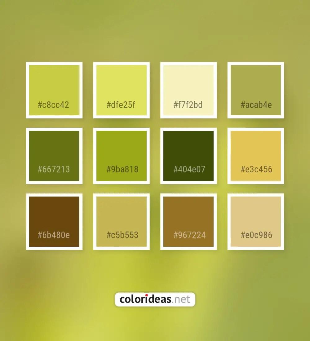 Turmeric Yellow Olivetone Brown Color Palette Color Palette Ideas