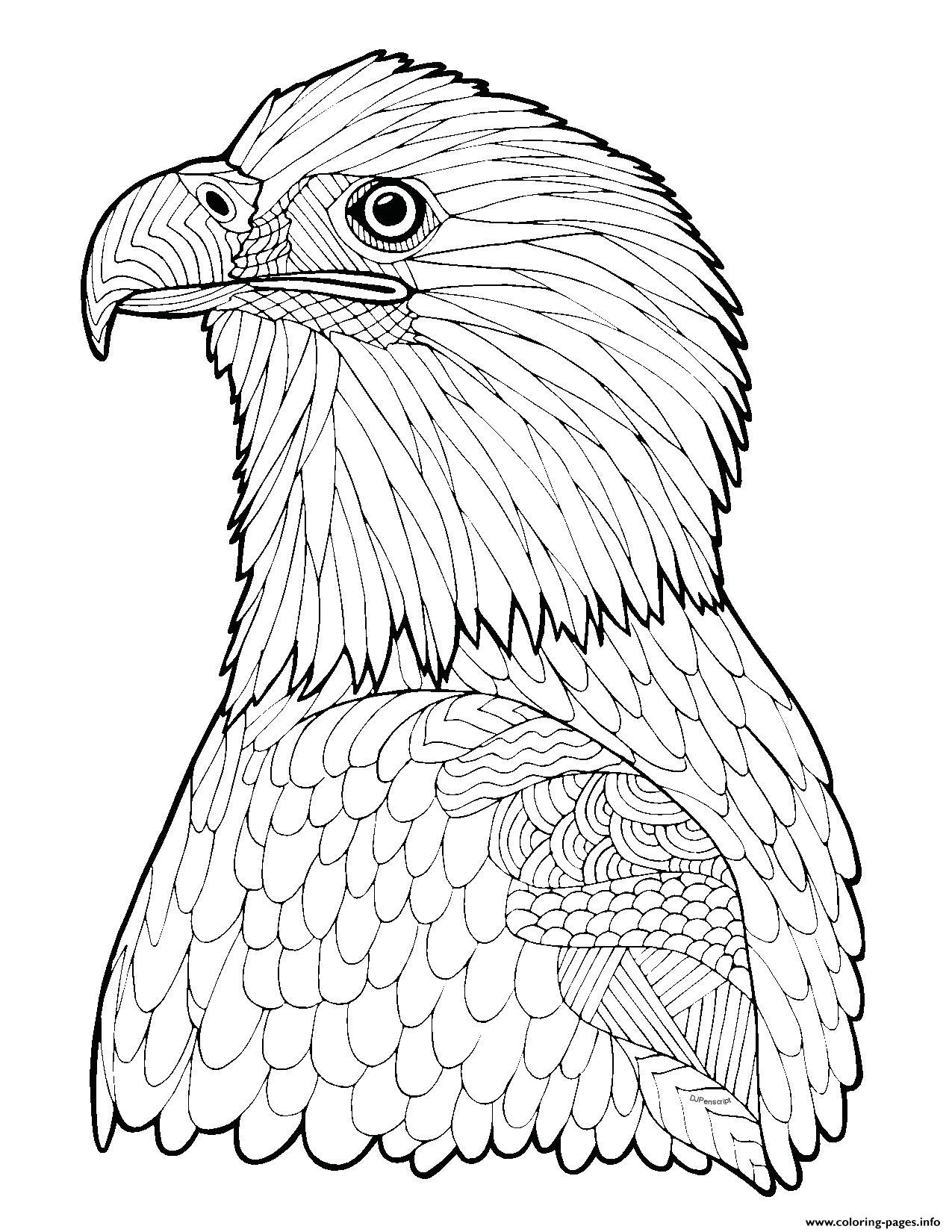 Bald Eagle Zentangle Page Adult Hard Advanced Coloring