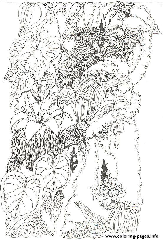 Umbrella Mural Coloring Tree Trunk 1 By Jan Brett Coloring