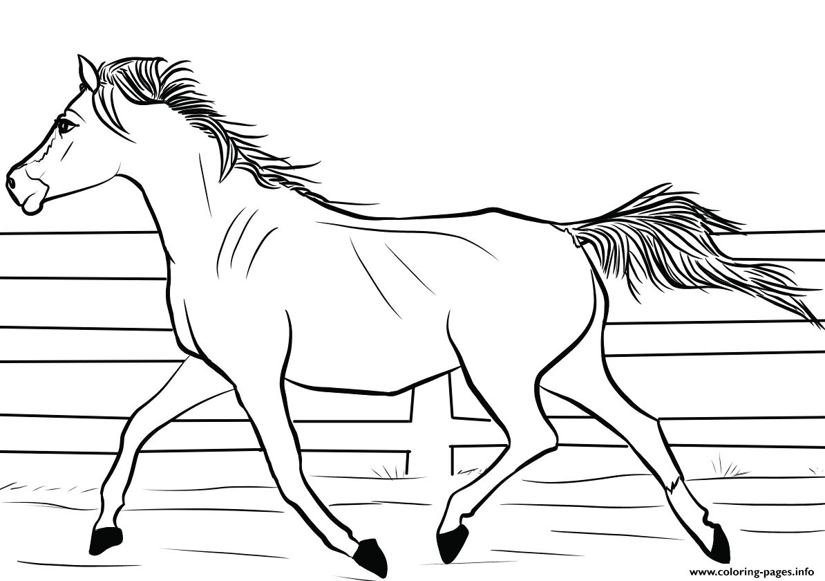 Arab Horse Coloring Pages Printable
