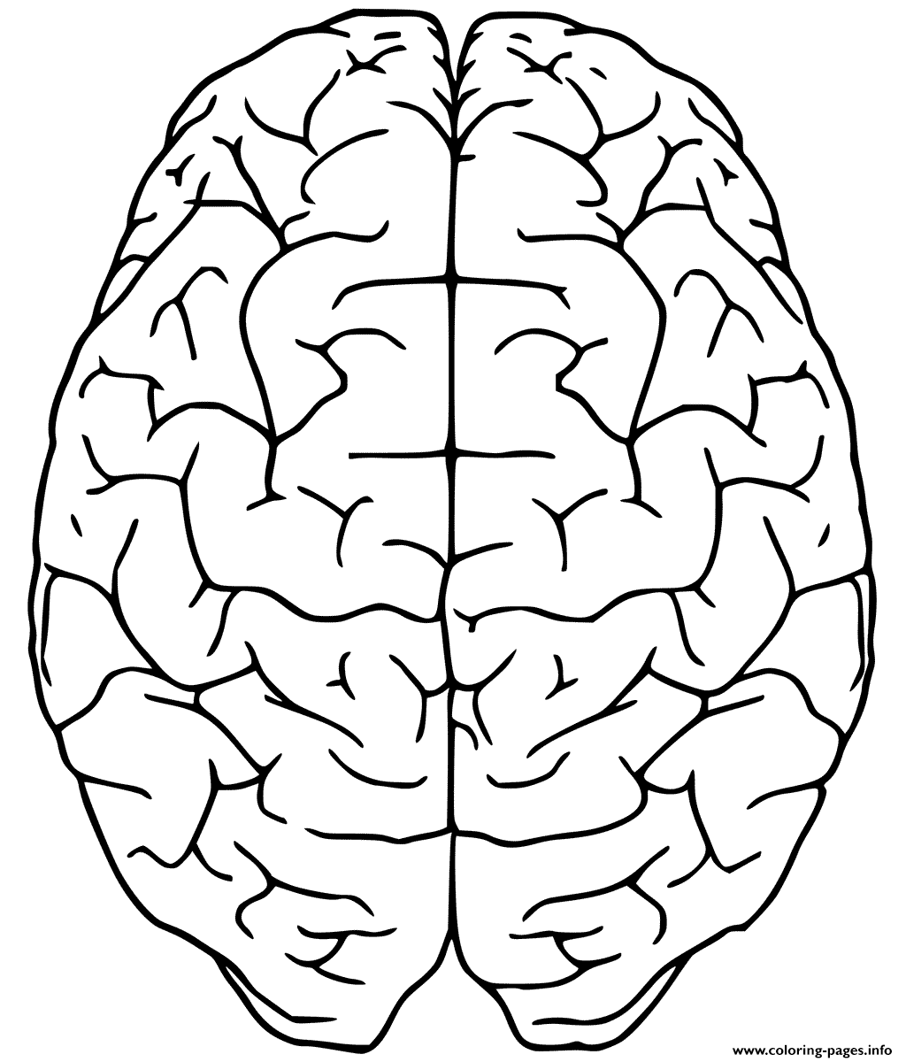 Brain Up Side Coloring Pages Printable