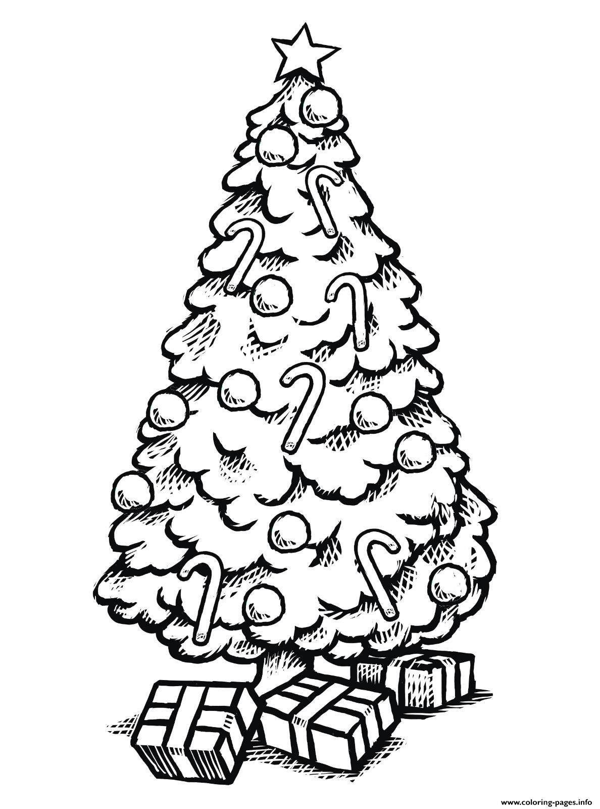 Beautiful Christmas Tree With Ts Coloring Pages Printable