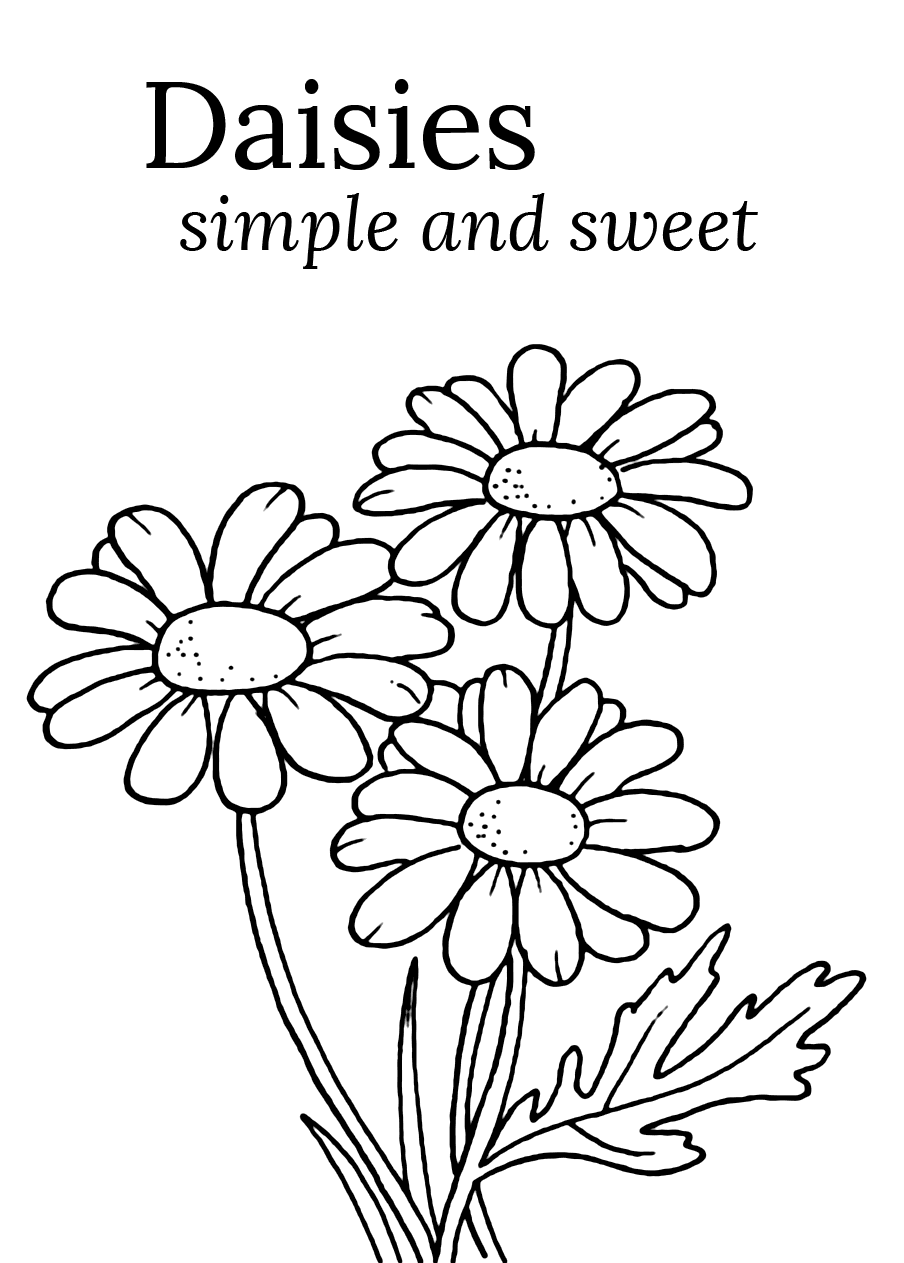 Daisy Coloring Pages Coloring Rocks
