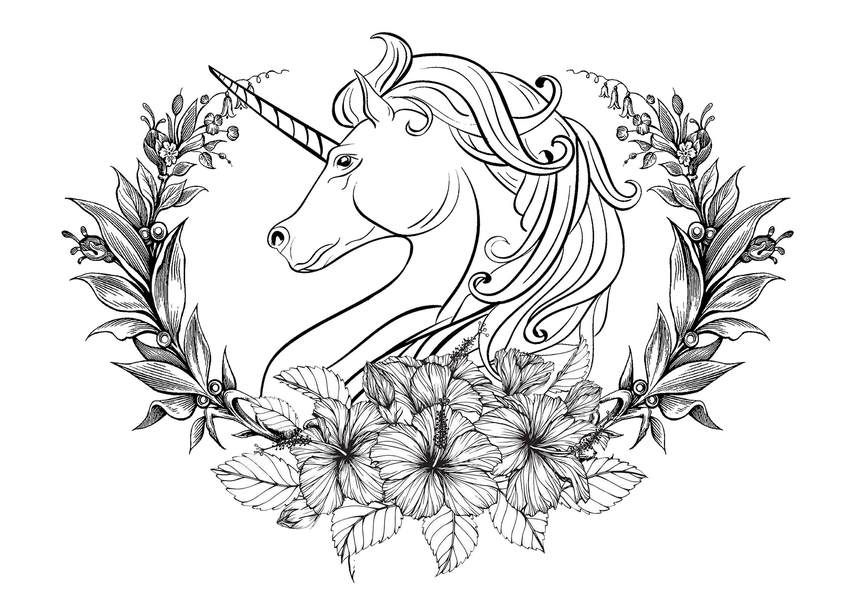 Unicorn Coloring Pages Coloringcks