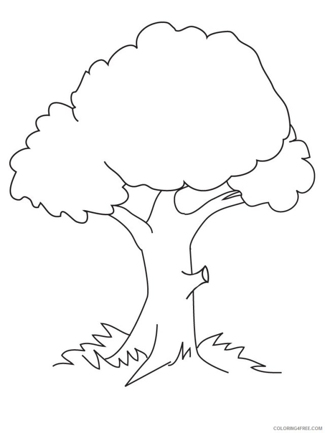Printable Tree Coloring Pages Tree Nature Trees Printable 27 27