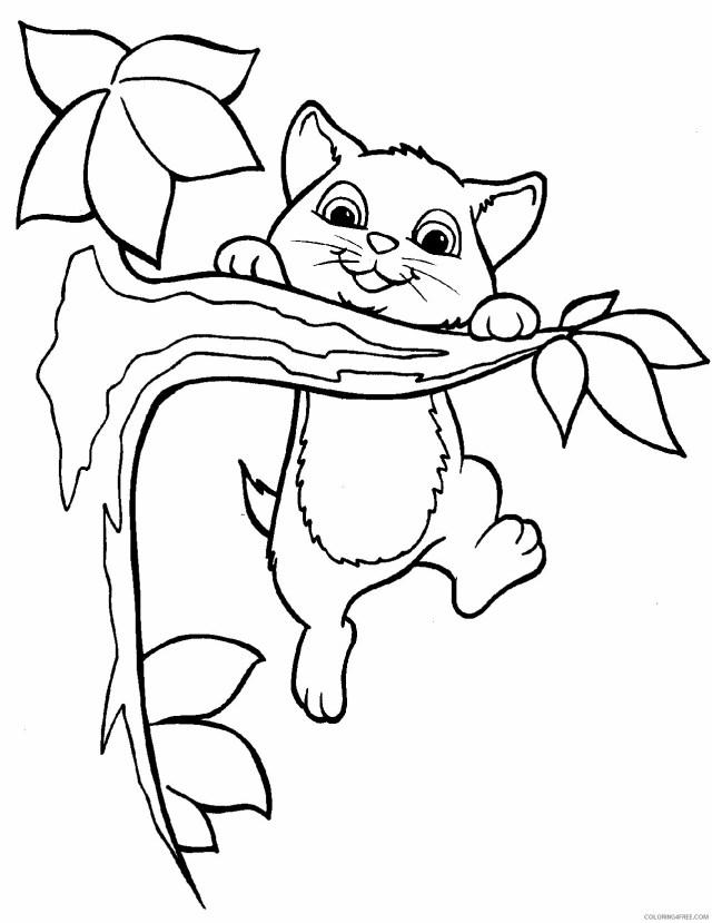 Kitten Coloring Pages Animal Printable Sheets Kitten Free 29