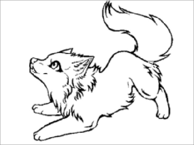 Baby Wolf Coloring Page - ColoringBay