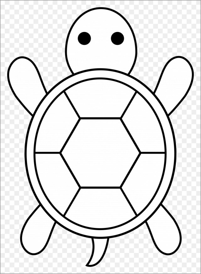 Easy Sea Turtle Coloring Pages for Kids - ColoringBay