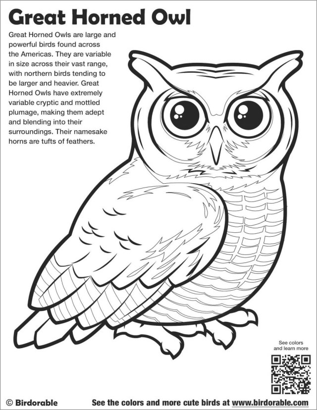 Great Horned Owl Coloring Page - ColoringBay