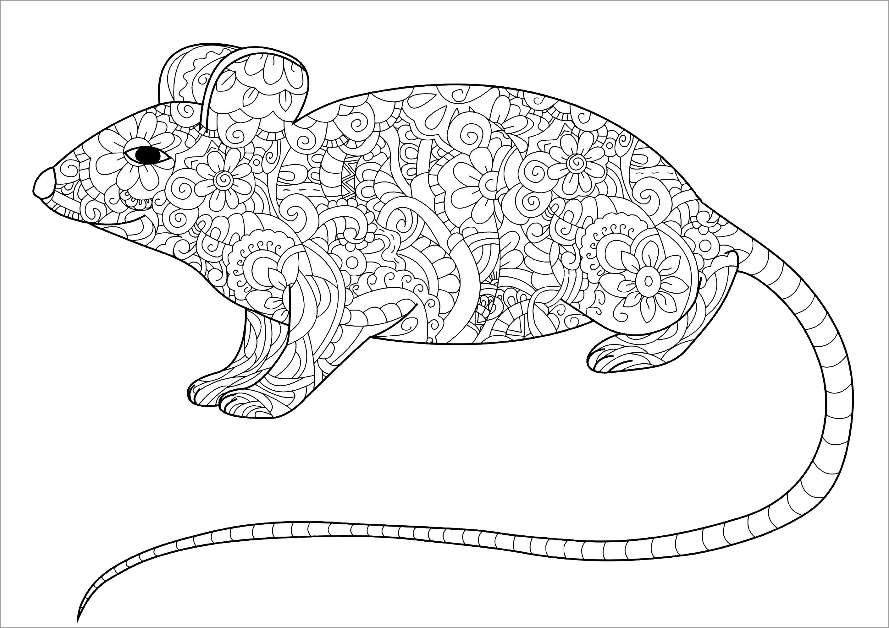 Rat Coloring Pages