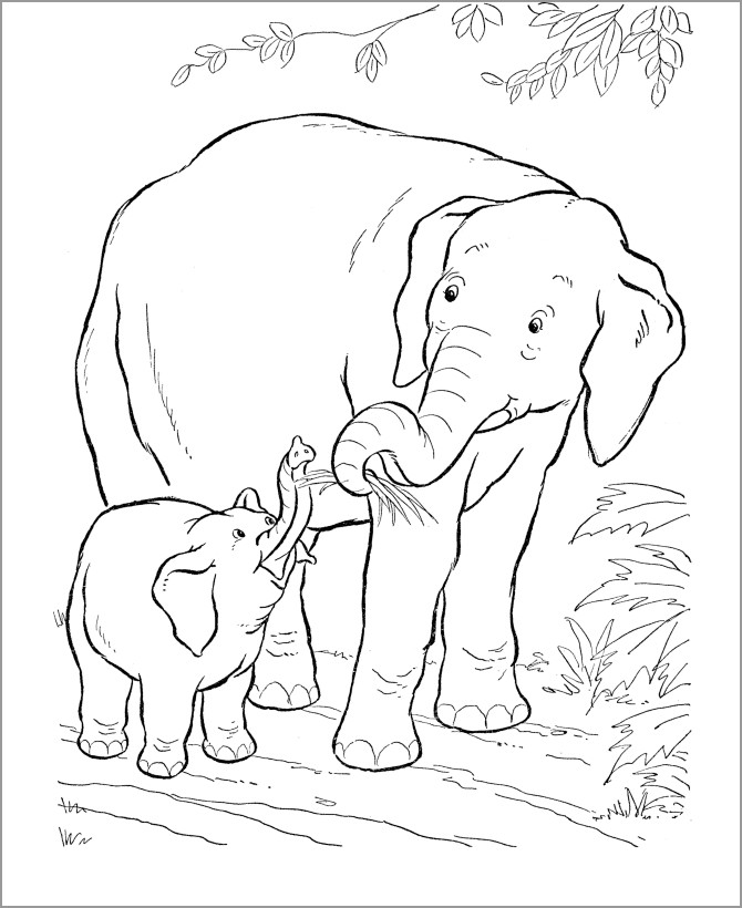 Mom And Baby Animal Coloring Pages Novocom Top