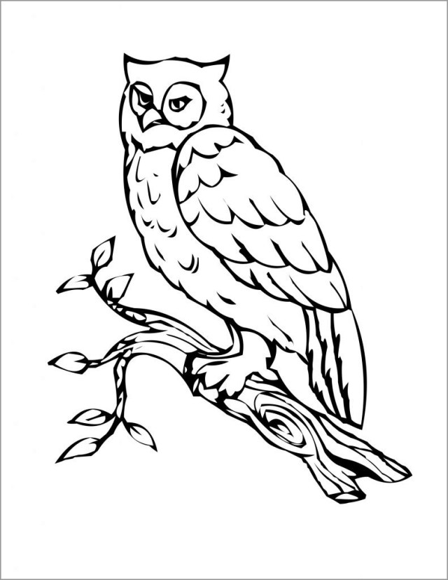 Owl Coloring Pages for toddlers - ColoringBay