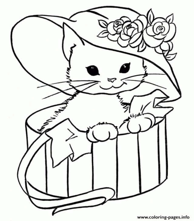 Preschool Kitten Coloring Pages - Coloring Home