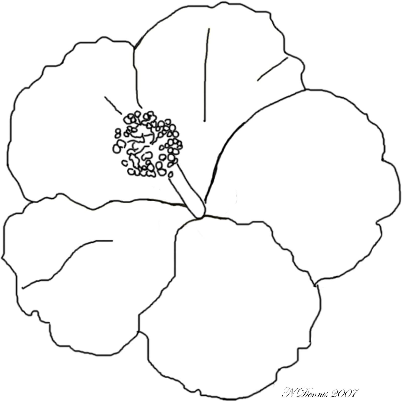 Free Coloring Pages Of Hibiscus Flowers
