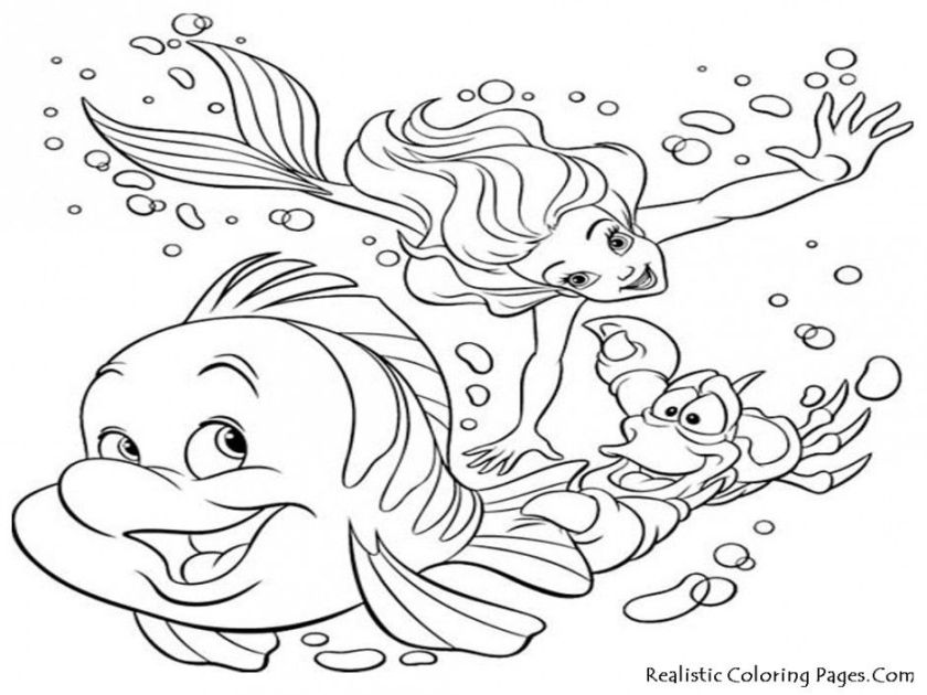 sea shell coloring page  coloring home