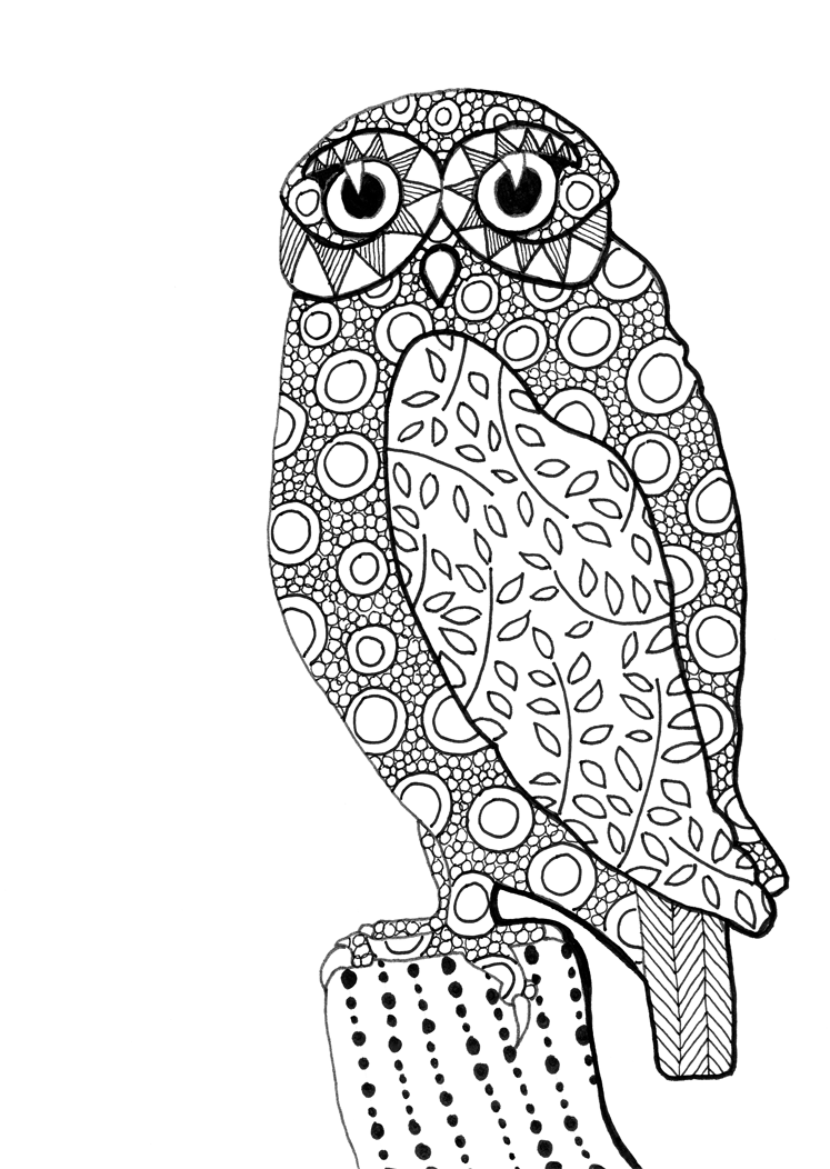 Owl Line Drawings Coloring Home