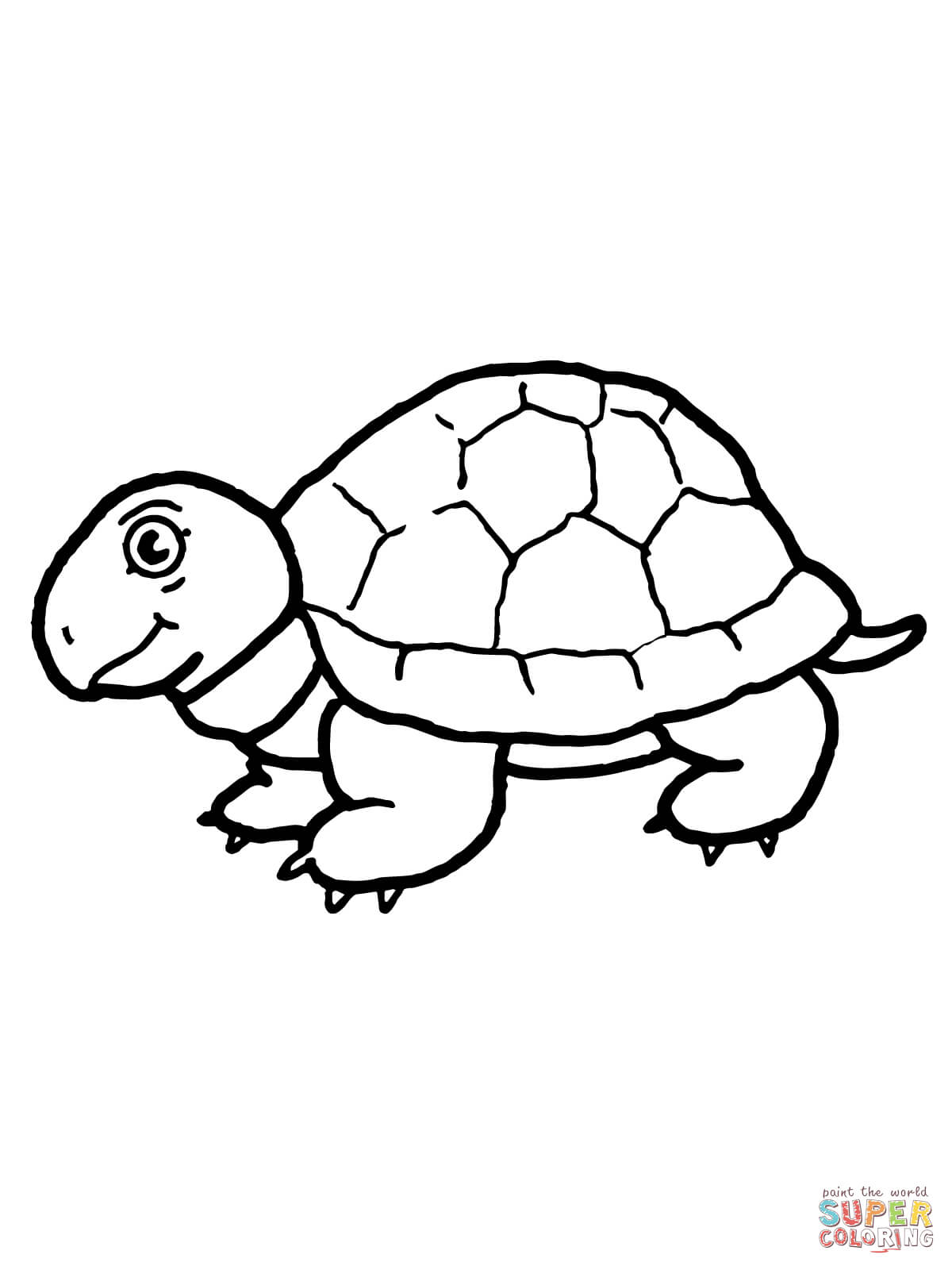 Tortoise Coloring Pages Free Coloring Pages