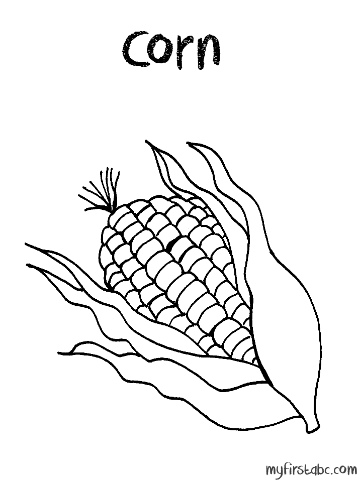 corn stalk coloring page  coloring home