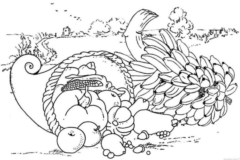 thanksgiving food coloring pages free  coloring home