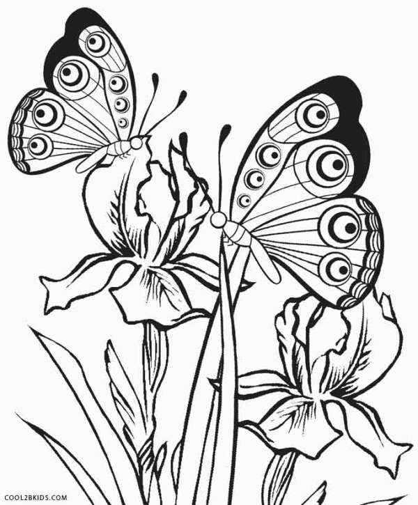 free printable butterfly coloring pages # 15
