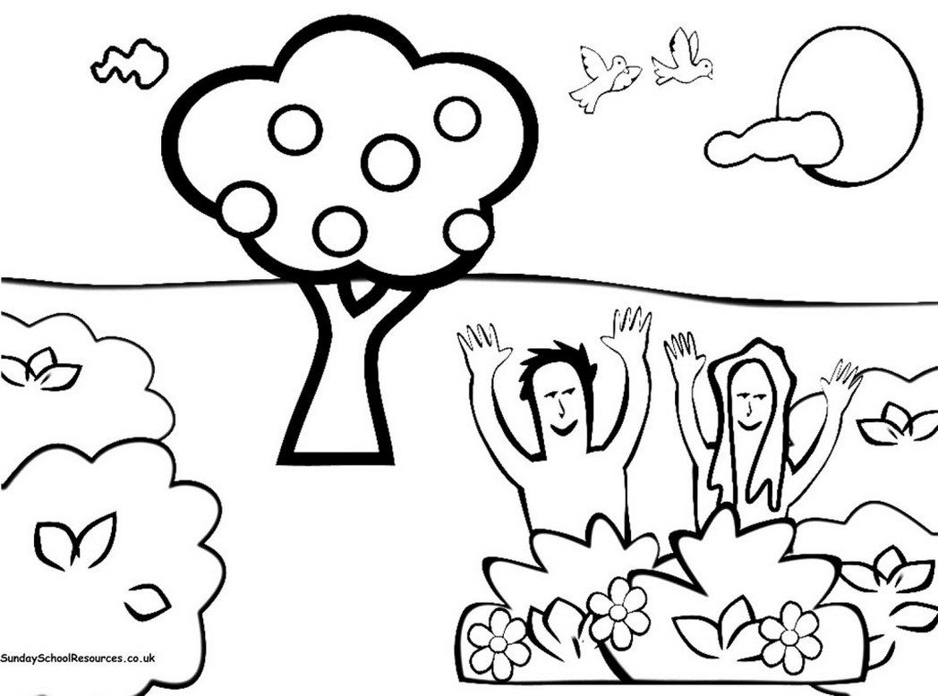 Free Printable Coloring Pages Of Creation Story