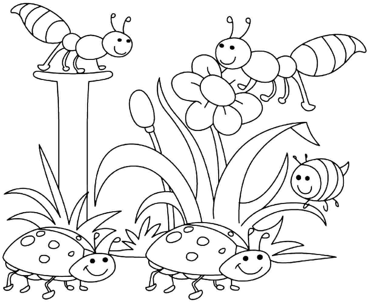 Printable Spring Coloring Pages Kindergarten