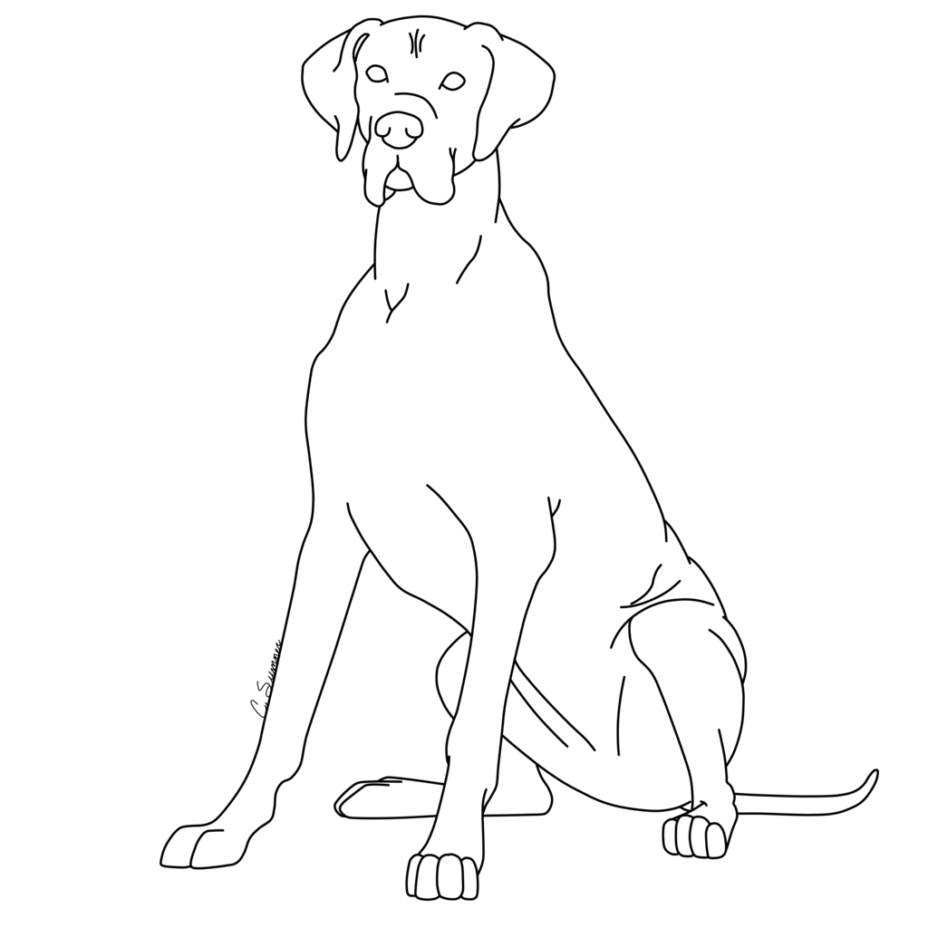 Great Dane Dog Coloring Pages