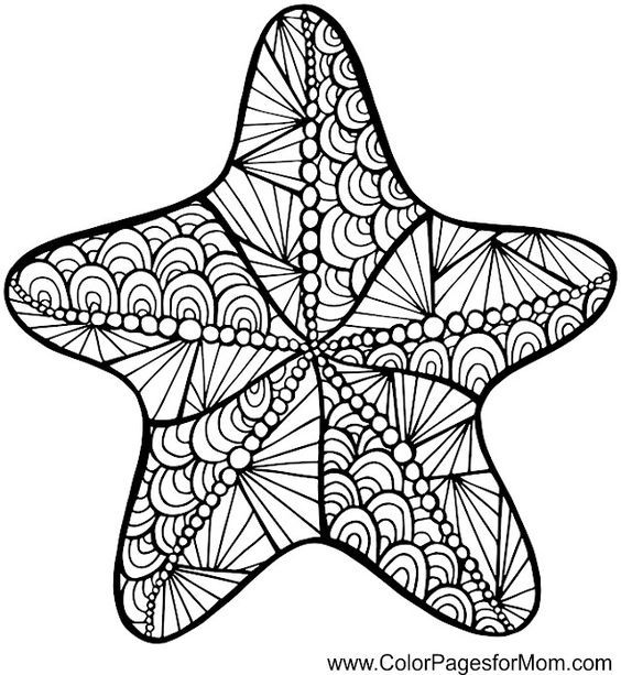 Colouring Pages Zentangle And Starfish Coloring Home