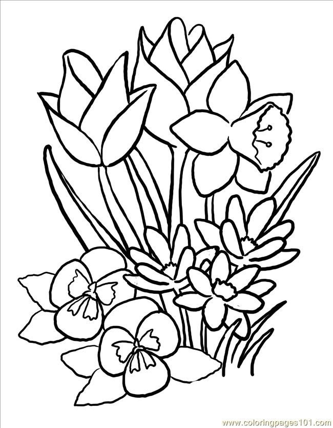 Free Printable Spring Flowers Coloring Pages Coloring Home